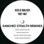 Not You (Sanchez Stealth Remixes)
